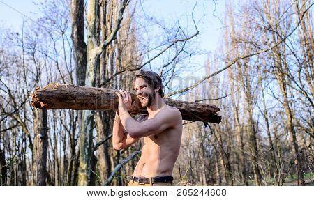Lumberjack Or Woodman Sexy Naked Muscular Torso Gathering Wood. Hermit Lifestyle. Man Brutal Sexy Lu