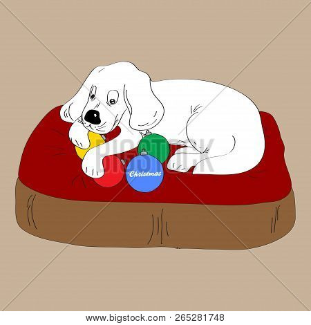 Hand Draw White Dog Puppy On Dog Bed Holding Christmas Baubles With Decorative Text Background