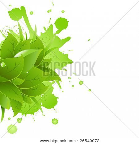 Grass And Leafs, Isolated On White Background, Vector Illustration