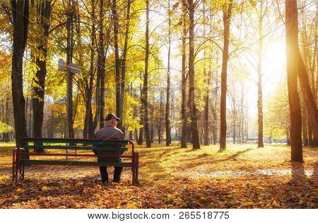 Elderly Retired Man Sitting On A Bench In A City Park, Retirement, Autumn Park And Sun, Pension, Gua