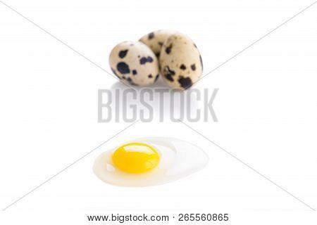 Broken Quail Egg