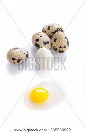 Boiled And Broken Quail Egg