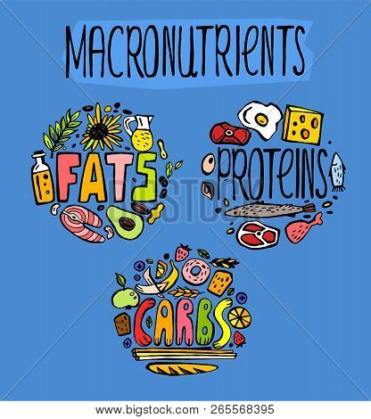 Main Food Groups - Macronutrients. Carbohydrates, Fats And Proteins In Doodle Style. Dieting, Health
