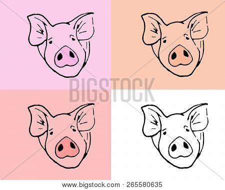 Simbol Of 2019 Year. Set Of  Muzzle Pigs