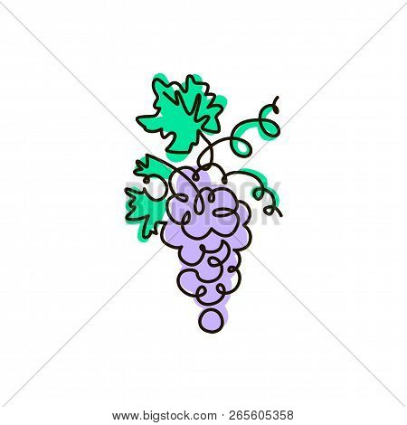 Vector Line Icon. Grape. One Line Drawing. Isolated On White Background. Continuous Single One Drawn