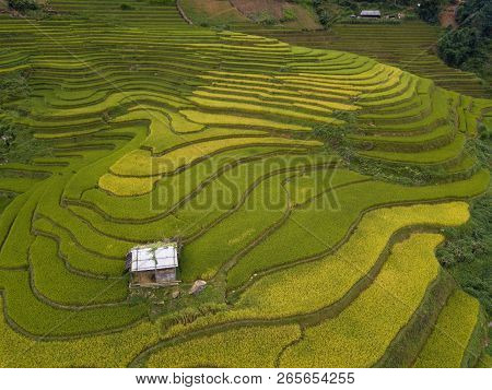Aerial View Above Of Vietnam Landscapes With Terraces Rice Field. Rice Fields On Terraced Of Mu Cang