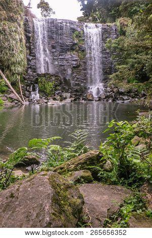 Nature In Kerikeri, New Zealand: Mossy Rocks And Ferns At Wairoa Stream (te Wairere) Waterfall, Far