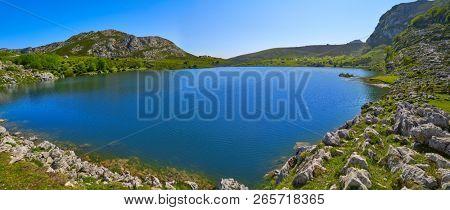 Enol lake at Picos de Europa in Asturias of Spain