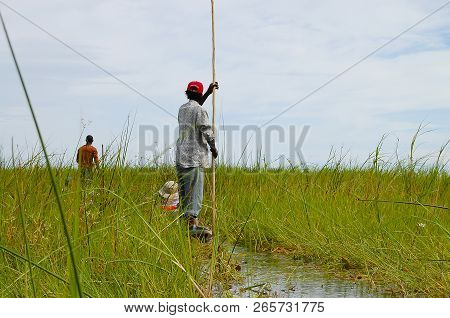 Man In Makoro Boat - Okavango Delta - Botswana
