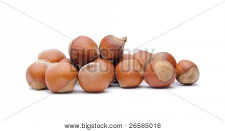 Isolated  hazelnuts