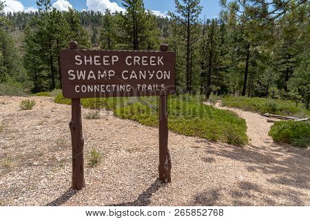 Bryce Canyon National Park - Trailhead Sign For The Sheep Creek Swamp Canyon Connecting Trail System