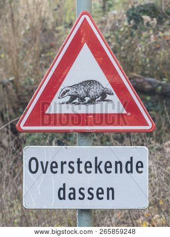 Valkenburg, Limburg, The Netherlands -january 1 2018: Badger Crossing Warning Sign On The Side Of A