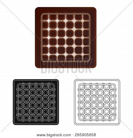 Vector Design Of Biscuit And Bake Logo. Collection Of Biscuit And Chocolate Stock Vector Illustratio