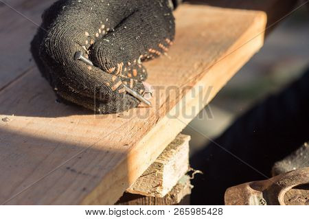 Construction, Hammering Nails With A Hammer In A Board