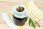 Filtering of plantain syrup against cough. Homemade ribworth plantain (Plantago lanceolata) syrup made from plantain leaves and sugar poster