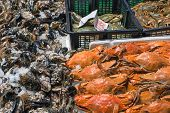 Crustaceans and oysters for sale at a market in Madrid, Spain poster