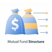 Investment fund structure, asset diversification, mutual fund concept, financial solution, stock market portfolio, hedge fund composition, capital consolidation, value distribution, vector icon poster