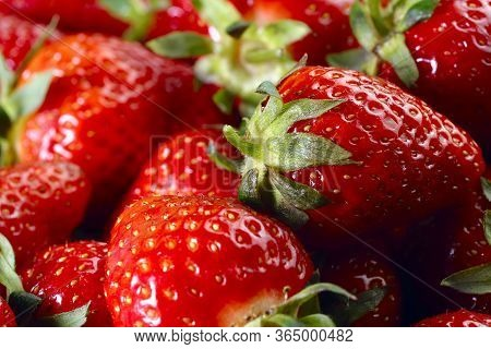 Fruit Background. Bunch Of Red Strawberries Closeup. Texture Of Strawberries. Natural Red Background