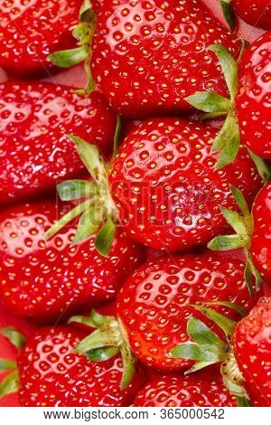 Fruit Background. Background Of Red Strawberries. The Texture Of Strawberries. Beautiful Berries Clo