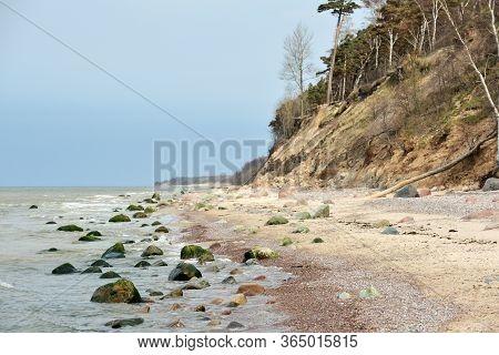 Baltic Sea Sandy Coast. Steep And Sandy Coast Of Baltic Sea In Lithuania