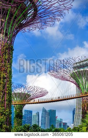 Gardens By The Bay In Singapore At Day. People Walk On A Suspension Bridge, In The Background Skyscr