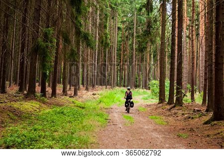 Summer Scene, Back View Of A Cyclist Riding On The Small Road Lined In Forest. A Woman Cycling In Pi