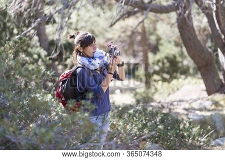 Mid Adult Backpacker With Ponytail Standing In Th Forest While Using A Photography Camera To Take A