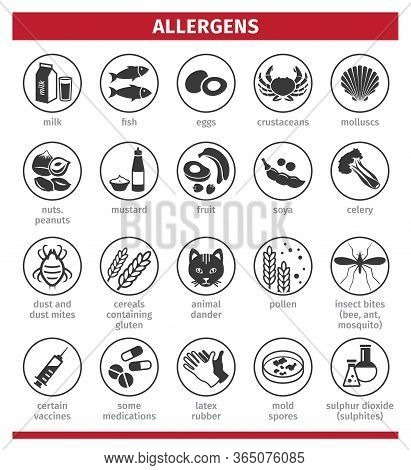 Major Allergens. Icon Set. Template For Use In Medical Agitation. Vector Illustration, Flat Icons. T