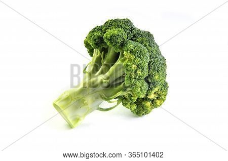 Broccoli Vegetable Isolated On White Background. Fresh Broccoli.