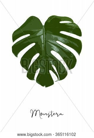 Decorative Monstera Leaf Isolated On White Background Poster Vector Illustration