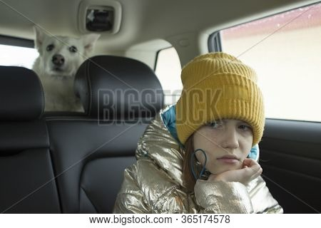 A Disgruntled Girl Is Sitting In A Car, Does Not Want To Go On A Trip. White Husky Laika Dog In The
