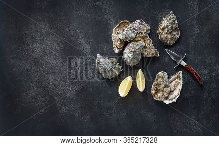 Fresh Oysters, Knife, Lemon Wedges On Dark Stone Background. Top View With Copy Space. Opened Fresh