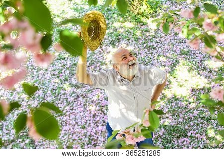 Springtime. Old Man Imagining Beautiful Good Things To Realize Further. Mature Man Looking Up With H