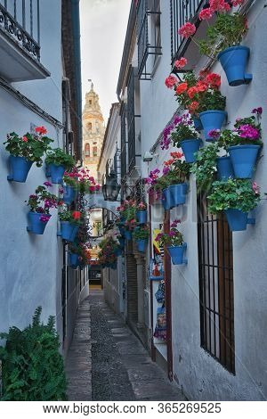 Photo Of The Calleja De Las Flores In Cordoba Spain