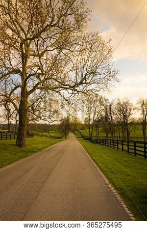 Coutryside Landscape. Country Road Along The Horse Farms At Sunset.