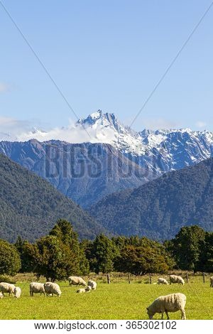 Southern Alps. Mount Cook. South Island, New Zealand