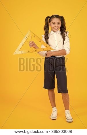 Pupil Solving Geometric Problems. Cute Small Pupil Holding Triangle On Yellow Background. Little Pup