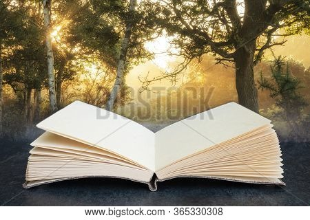 Conceptual Composite Open Book Image Of Stunning Sunrise Landscape In Misty New Forest Countryside