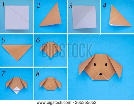Step By Step Photo Instruction How To Make Origami Paper Dog. Simple Diy Kids Childrens Concept.