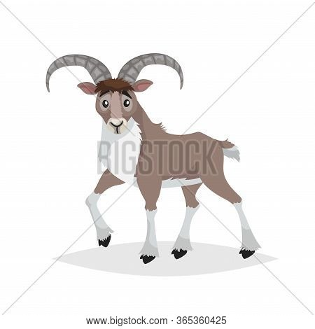 Cute Cartoon Bighorn Ship. Mountain Animals. Urial In Comic Style. Wild Animal. Vector Drawing For K