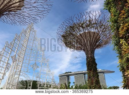 Singapore, Republic Of Singapore - December 16, 2019: Supertree Grove At Gardens By The Bay -  A Won