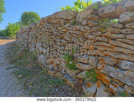 Traditional Drywall In Perspective In Promina County In Croatia. Croatian Drywall Construction Is A
