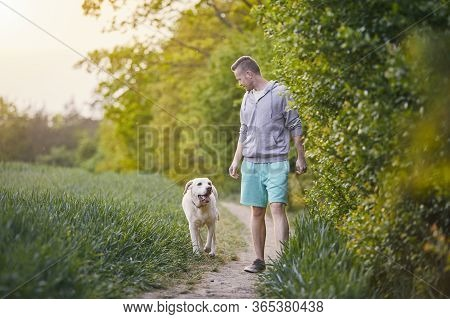 Young Man Walking With His Happy Dog (labrador Retriver) On Footpath In Spring Nature.