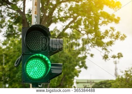 Green Light On Traffic Light Pole With Good Sun Light And Tree On Background. Symbol Of Traffic Rule