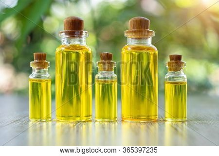 Hemp Oil In A Glass Bottle Lined Up And The Seeds In A Wooden Spoon The Idea Of Using Oil Extracted