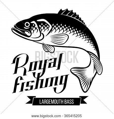 Largemouth Bass Fish Vector Illustration Royal Fishing Calligraphy