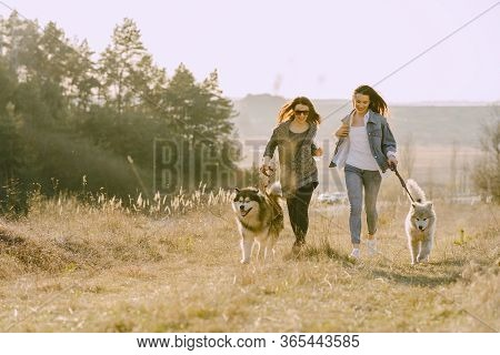 Two Stylish Girls In A Spring Field With A Dog