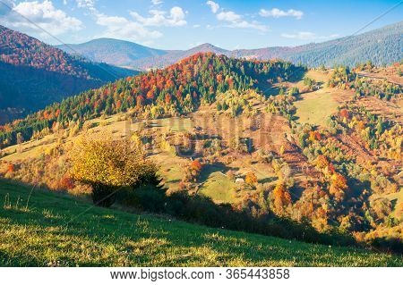Countryside In Autumn At Sunset. Mountain Landscape With Forests And Meadows In Evening Light Beneat