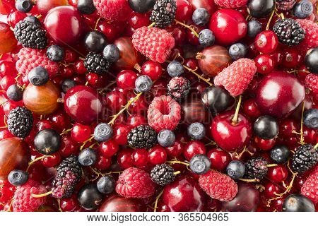 Background Of Fresh Berries And Fruits. Ripe Red Currants, Bilberries, Mulberry, Gooseberries, Black