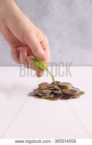Take Your Oncom. Stack Of Coins On A White Background. Invest Your Money To Get In Come, Growing Bus
